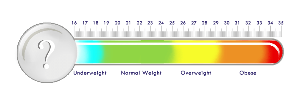 bmi chart thermo